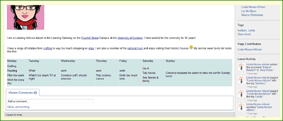 BB Wiki 2, screenshot of blackboard wiki