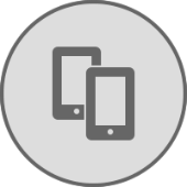 Mobile device security icon